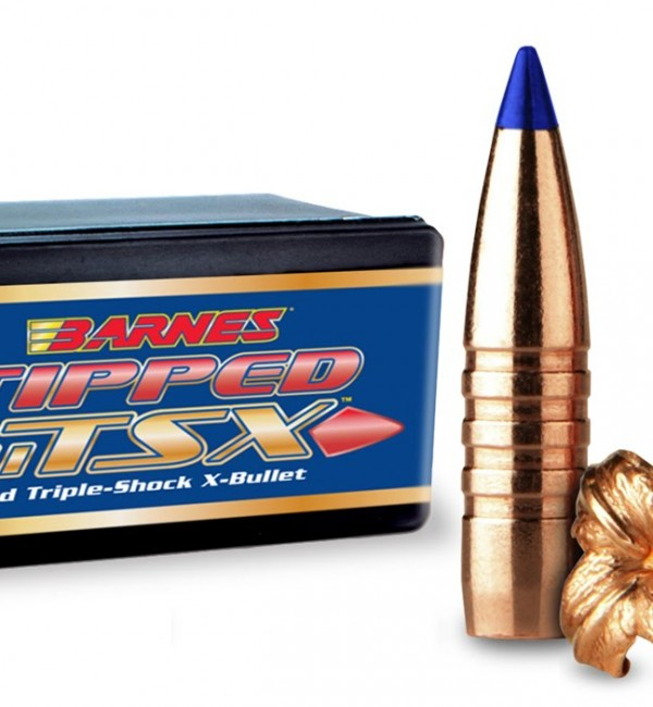 tippedtsxbox-bullets-w-blue-tip-600x650